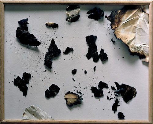 Kevin_Paine_Nine_Words_chromogenic_print_5_Insecurity